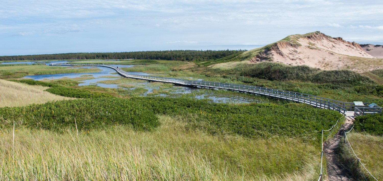 walking trail in Greenwich PEI