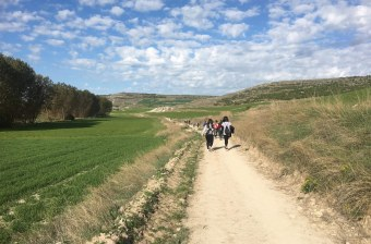 students walking the camino de santiago
