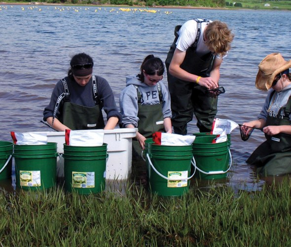 four students collecting aquatic samples